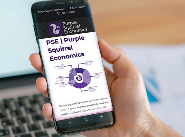 Purple Squirrel Economics website Design and Maintenance